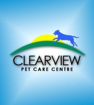 pet partner spotlight clearview pet care centre   pets in
