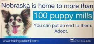 Bailing Out Benji's first Nebraska billboard