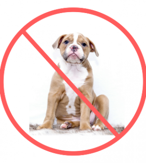 Breed-specific-legislation